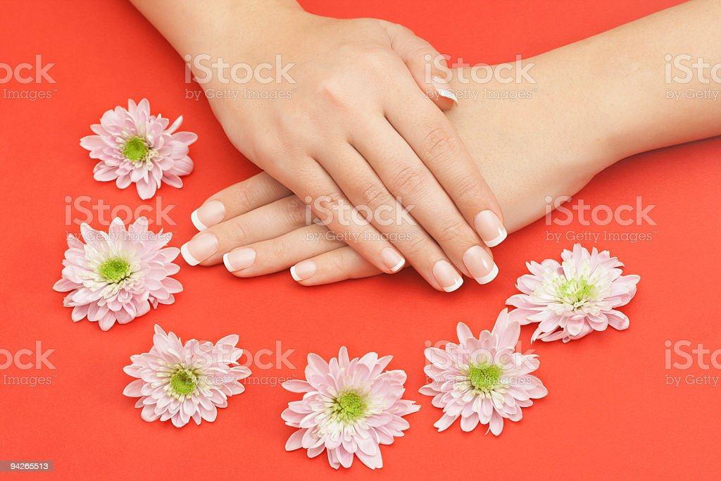 Beautiful female hands with flowers royalty-free stock photo