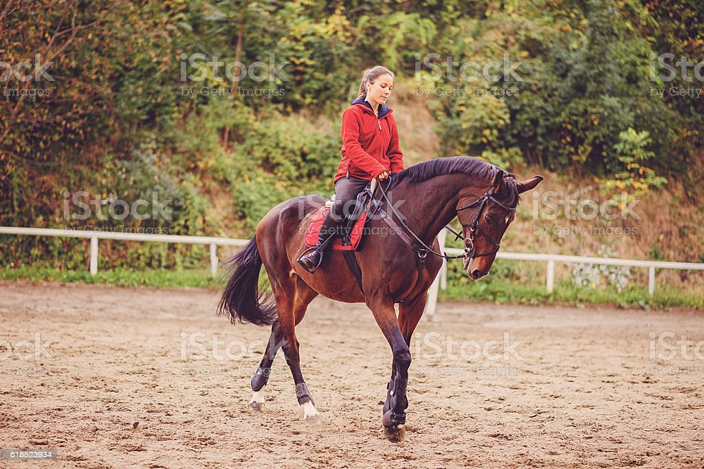 Beautiful female rider on training with her horse stock photo