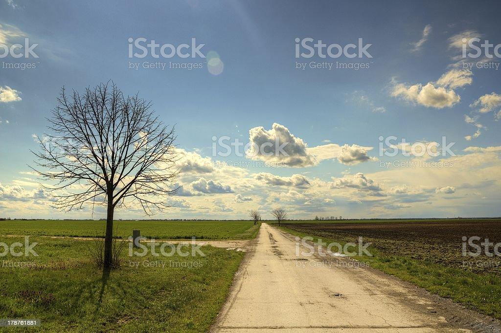 Wunderschöne field Lizenzfreies stock-foto