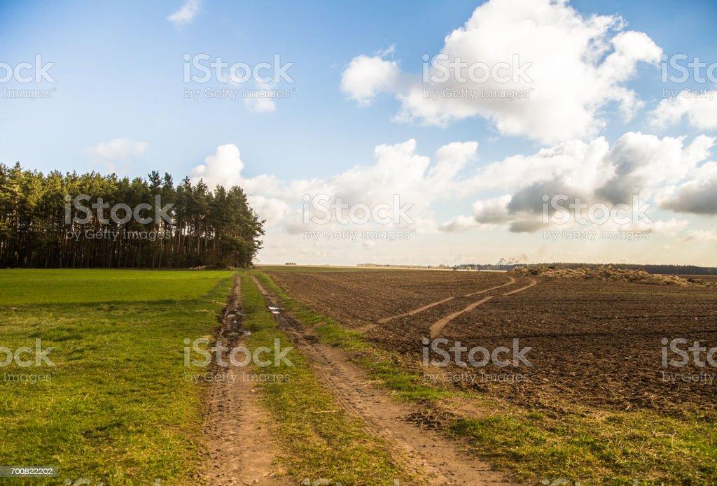 A beautiful field scenery of Slovakia. stock photo