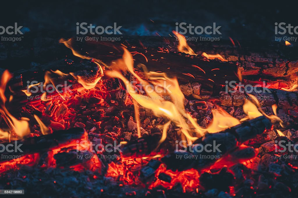 Beautiful fire close-up, hike in the woods. stock photo