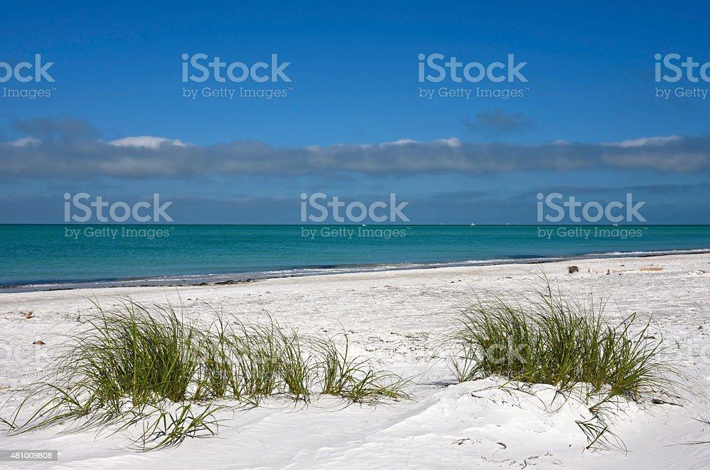 Beautiful Florida Coastline stock photo