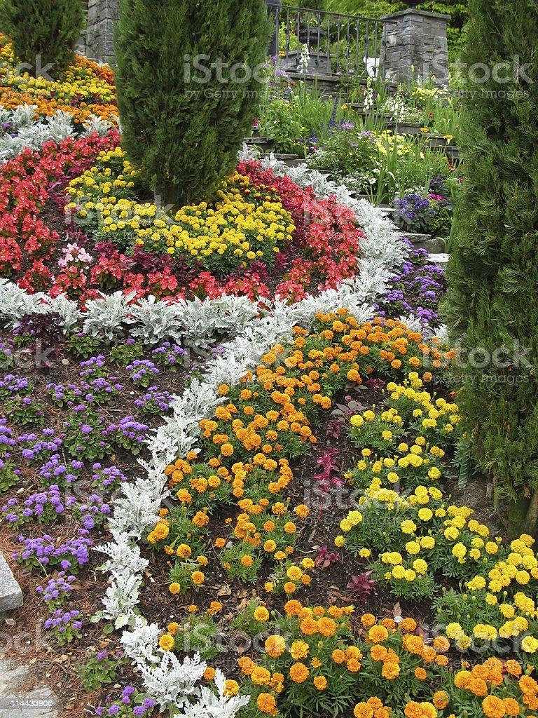 Beautiful flower park - Insel Mainau stock photo