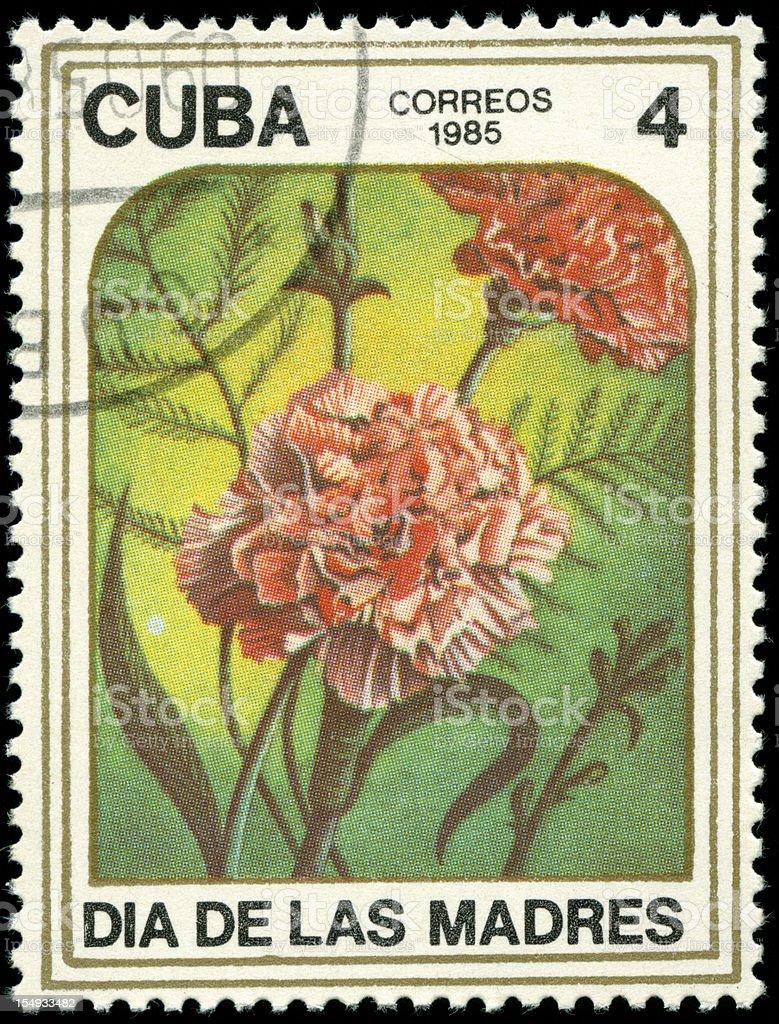 Beautiful flowers of the Caribbean stock photo