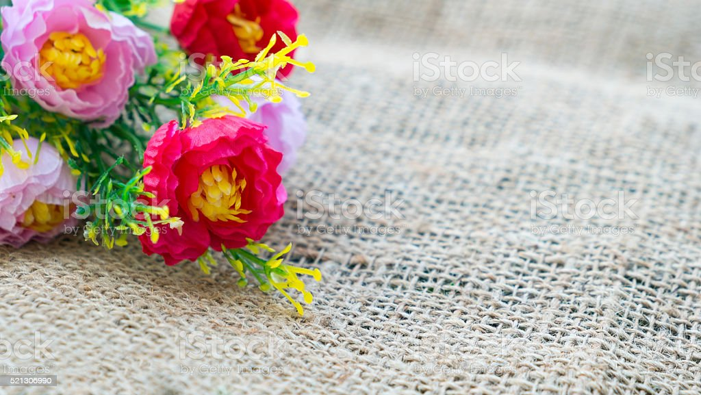 Schöne Blumen auf Hanf Lizenzfreies stock-foto