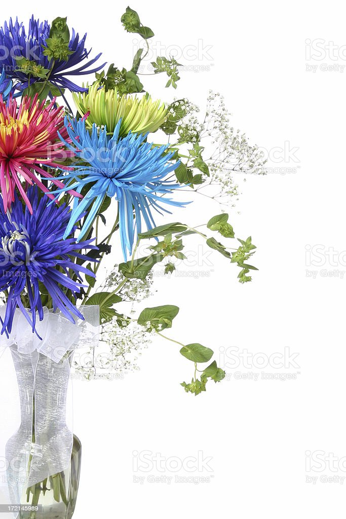 Beautiful Flowers (on white with copyspace) stock photo