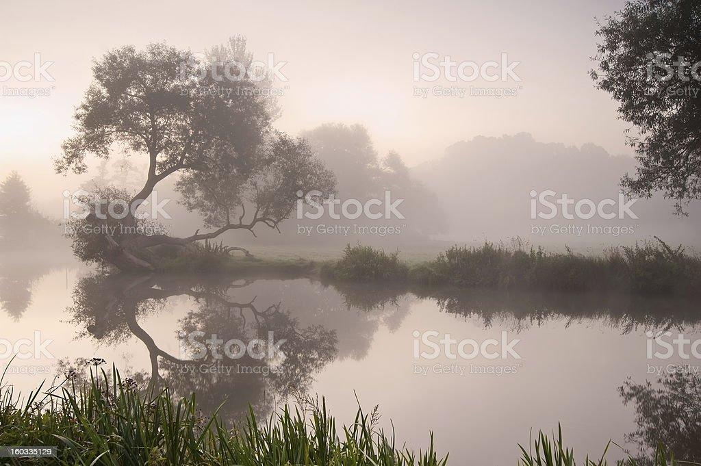 Beautiful foggy sunrise landscape over river royalty-free stock photo