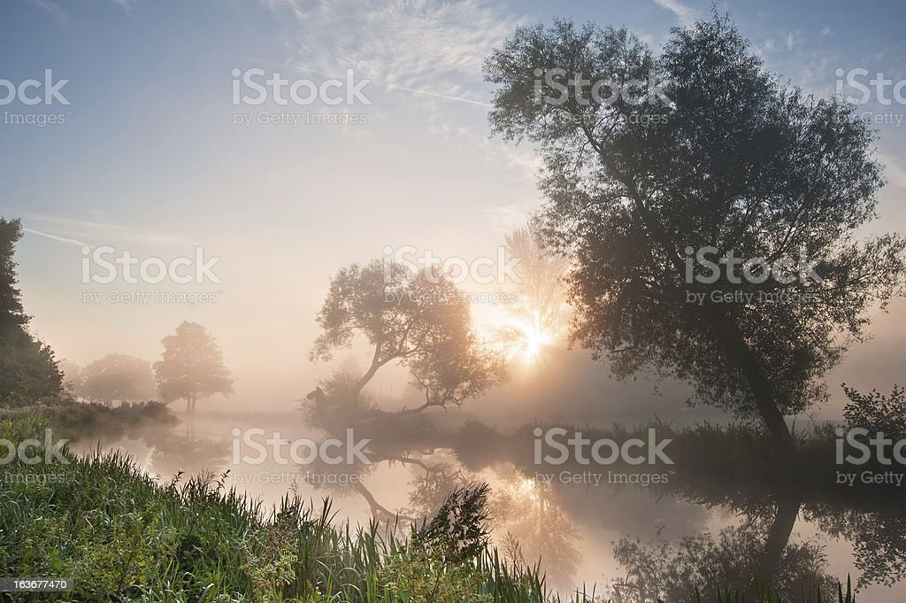 Beautiful foggy sunrise landscape over river with trees and sunbeams stock photo