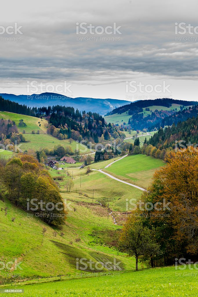 Beautiful forest valley landscape trees meadows autumn hills mountains stock photo