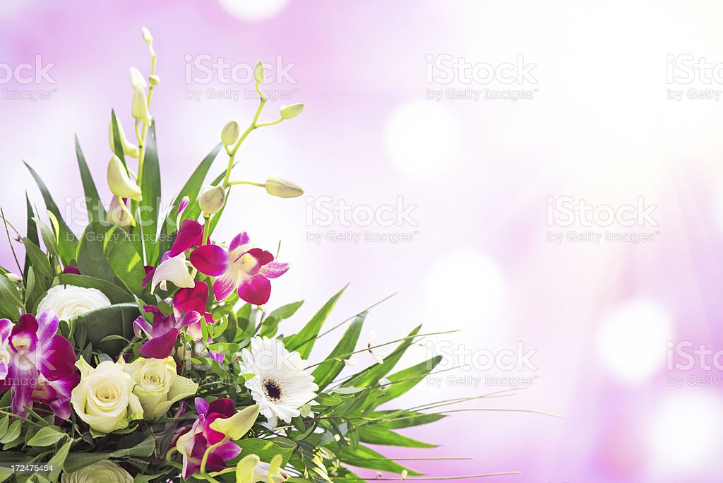 Beautiful fresh flower bouquet with pink illuminated background royalty-free stock photo