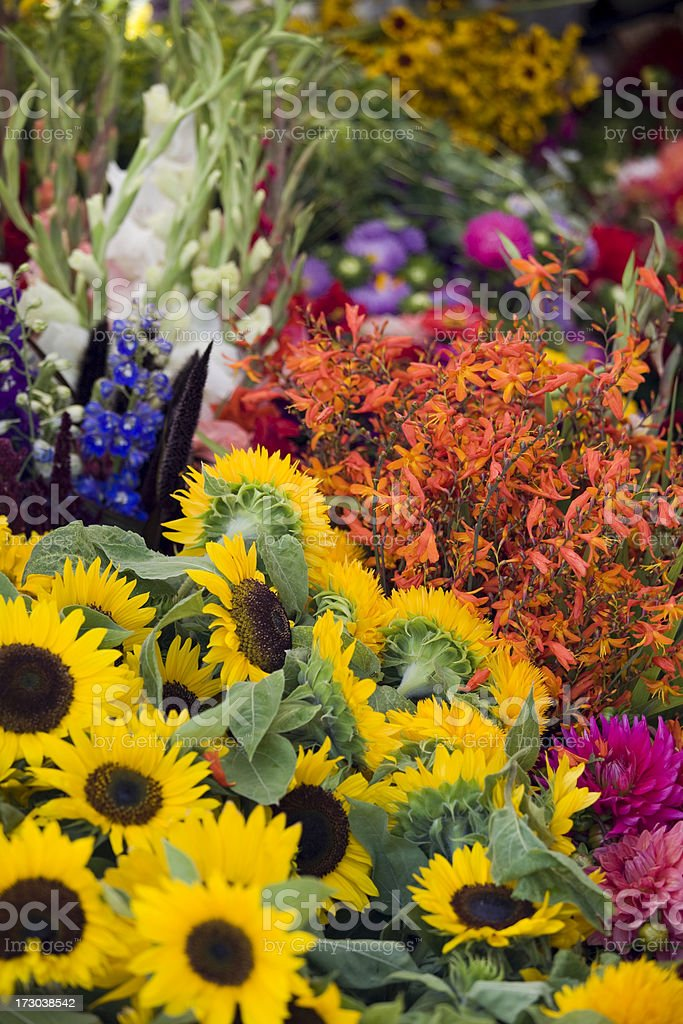 Beautiful fresh flowers at an outdoor market royalty-free stock photo