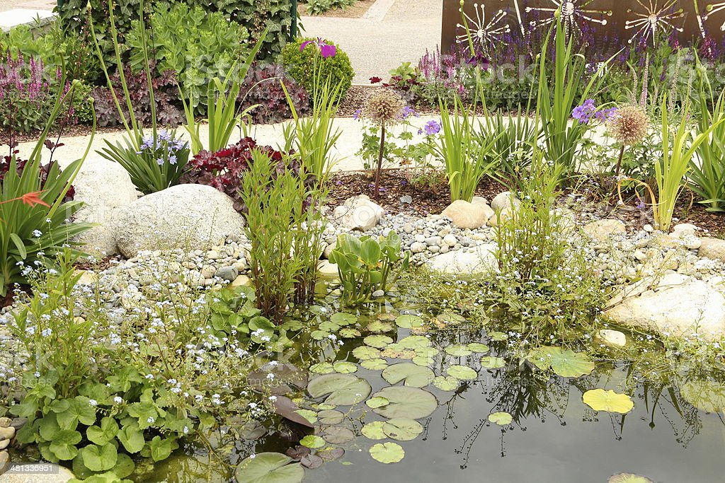 Beautiful garden design with pond stock photo