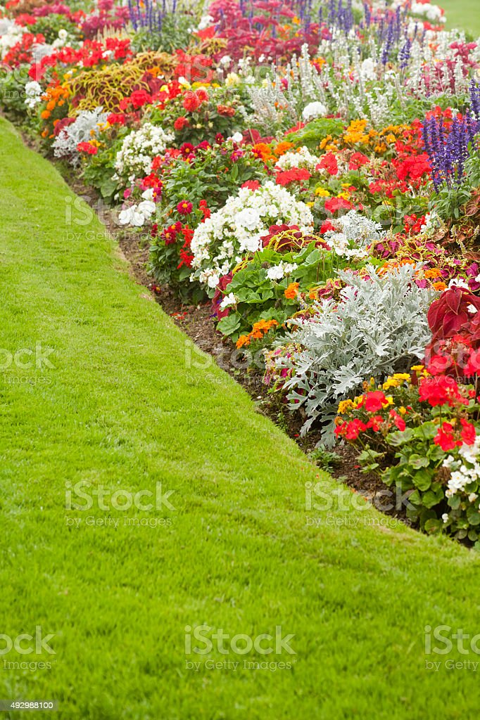 Beautiful garden flower bed stock photo