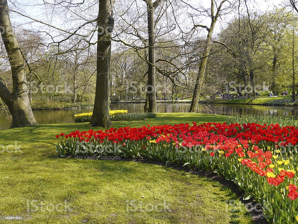 Beautiful garden in spring royalty-free stock photo