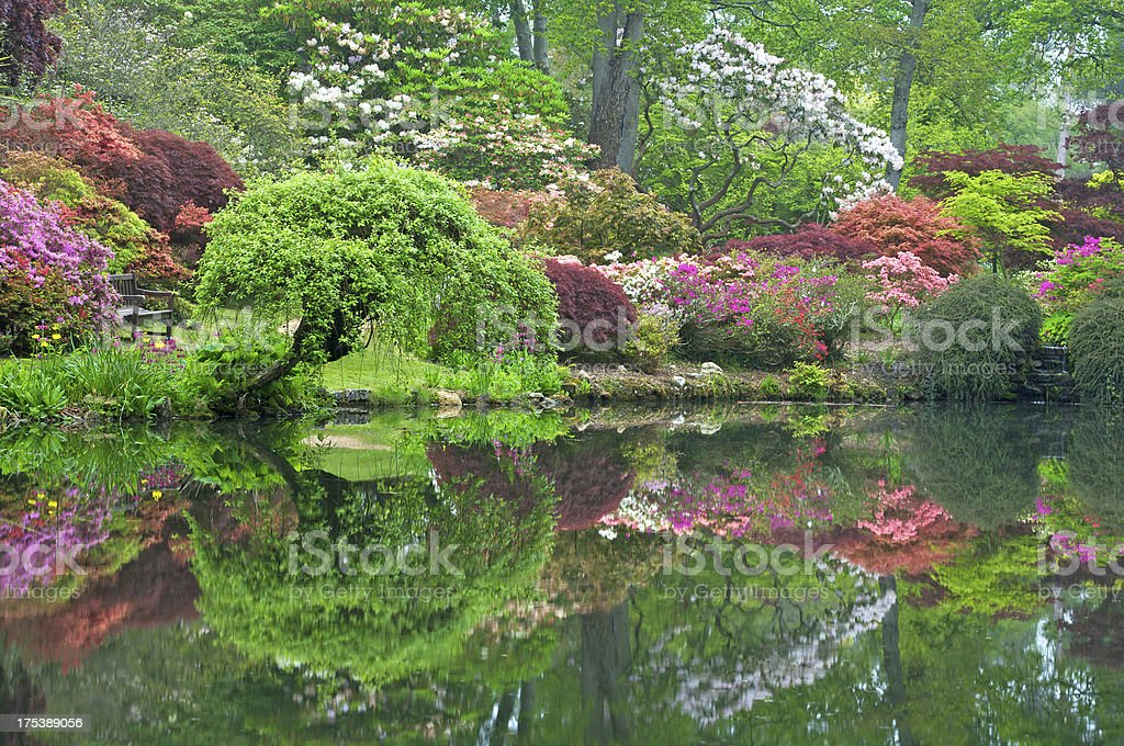beautiful garden setting royalty-free stock photo