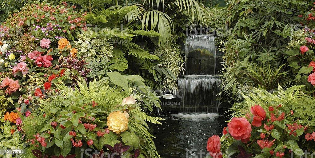 Beautiful garden with a waterfall stock photo