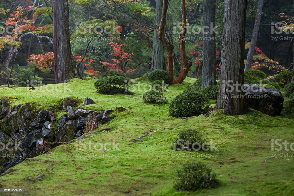 Beautiful garden with trees in full Fall colors stock photo