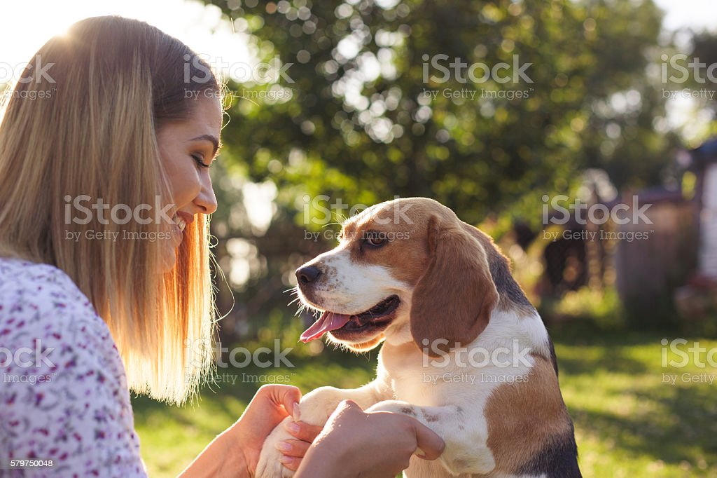 Beautiful Girl and a dog. stock photo