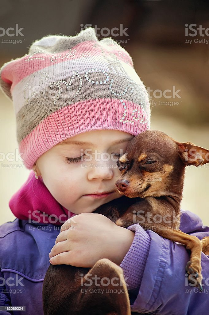 Beautiful girl holding small chihuahua dog, friendship concept stock photo