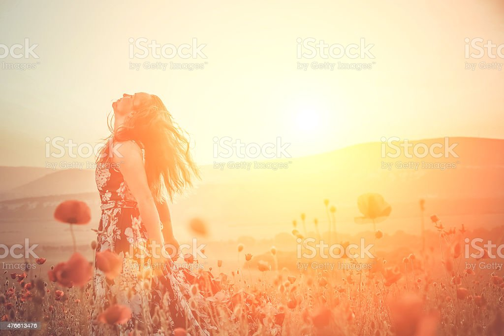 beautiful girl in a poppy field at sunset stock photo