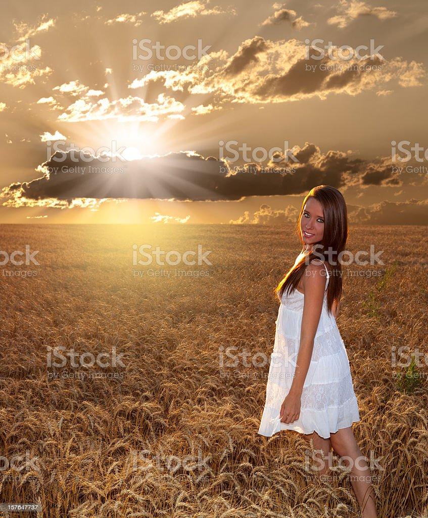 Beautiful Girl in Amazing Golden Sunset, Wheat Field Landscape stock photo