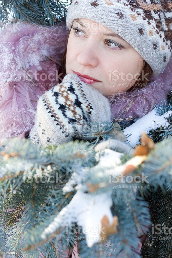 Beautiful girl in hat and mittens royalty-free stock photo