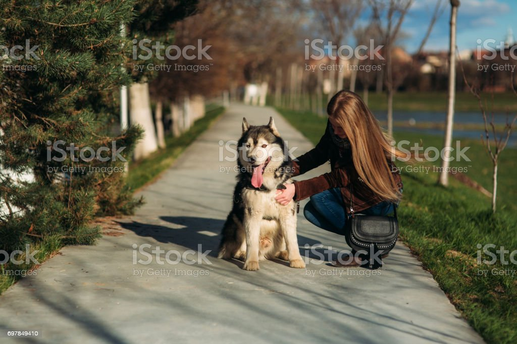 A beautiful girl is walking along the embankment with a dog. Blond hair and brown jacket. Spring. Hysky stock photo