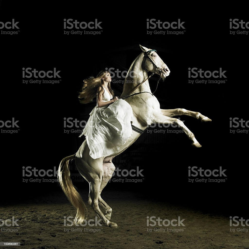 Beautiful girl on a white horse stock photo