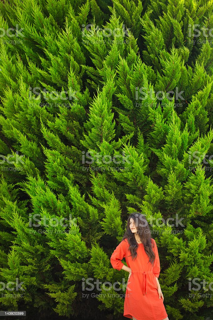 Beautiful girl on the background of fir-tree royalty-free stock photo