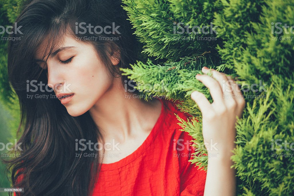 Beautiful girl on the background of fir-tree stock photo