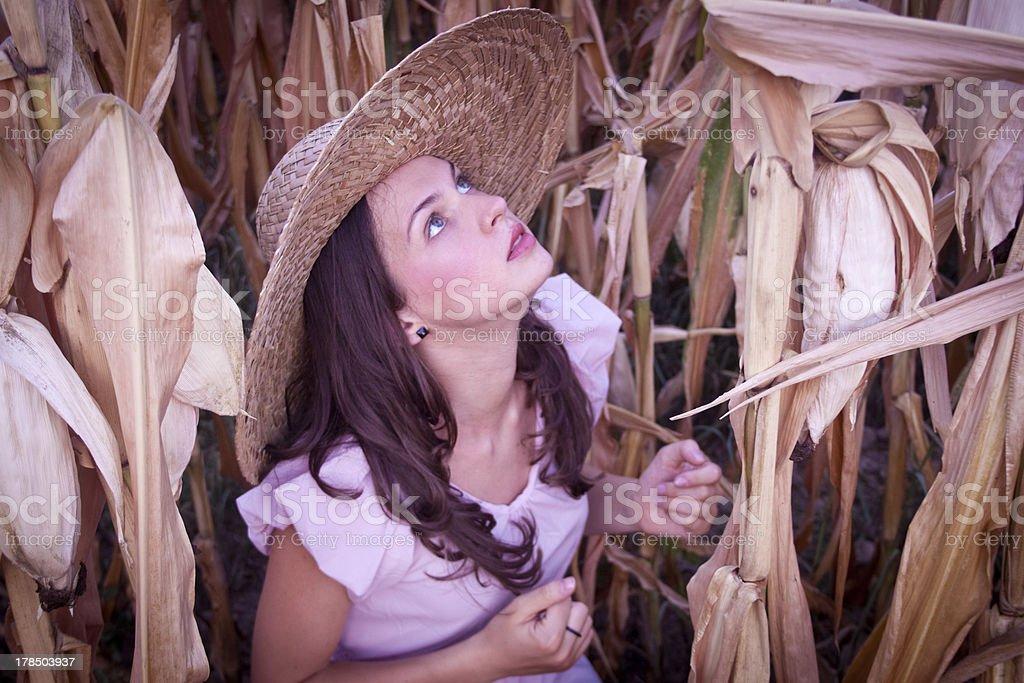앉아 있는 아름다운 소녀 필드 콘 royalty-free 스톡 사진
