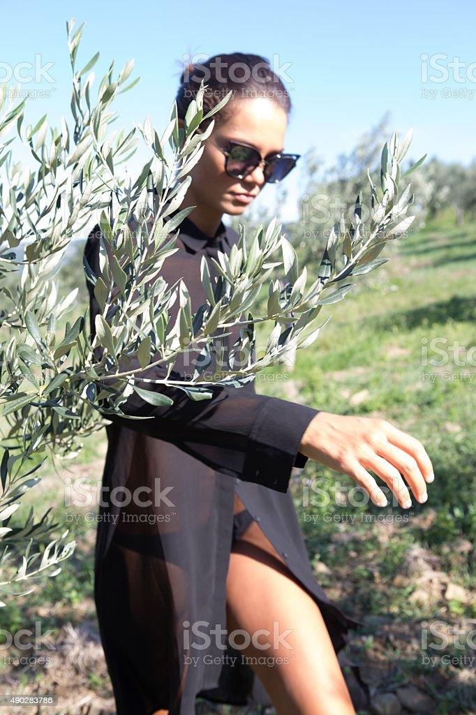 beautiful girl walking among the olive trees stock photo