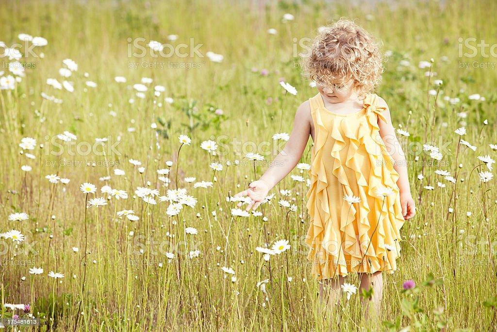 Beautiful Girl Walking In Field Of Flowers stock photo ...