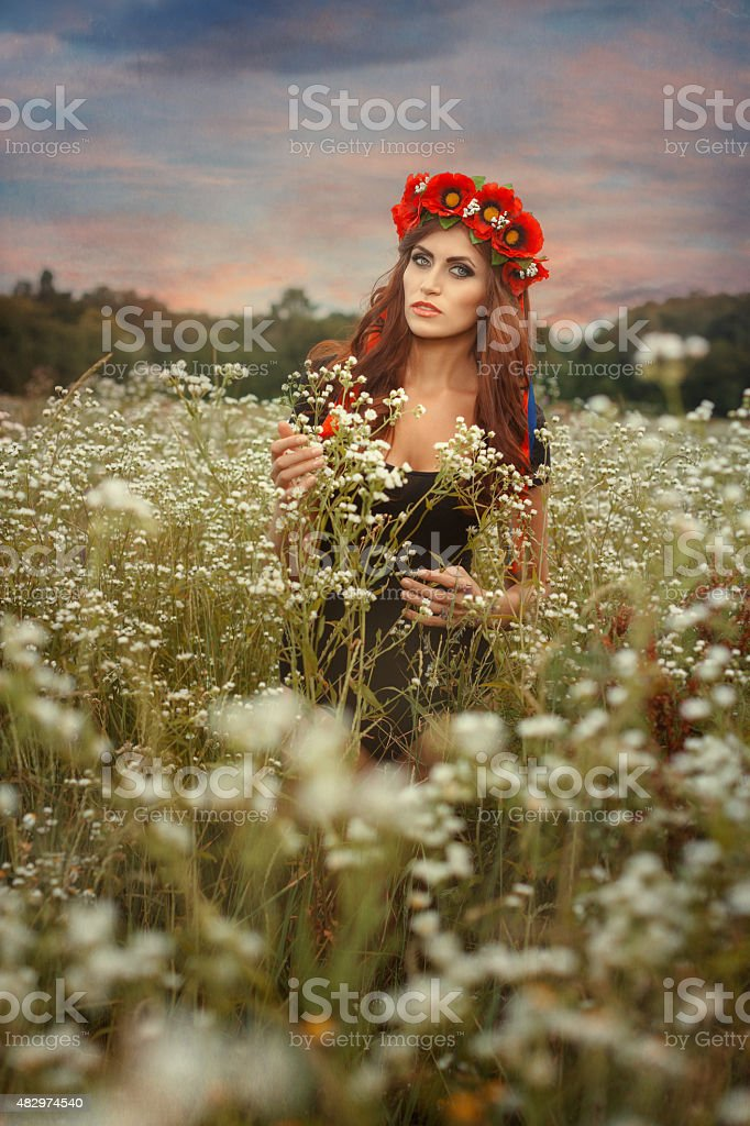 Beautiful girl with a wreath on her head. stock photo