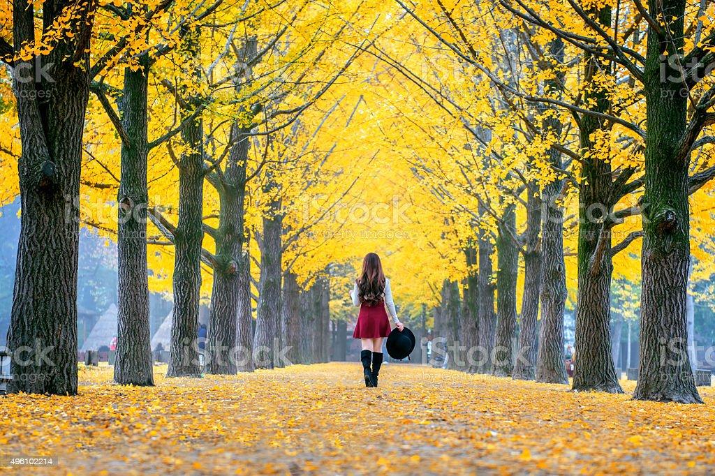 Beautiful Girl with Yellow Leaves in Nami Island, Korea stock photo