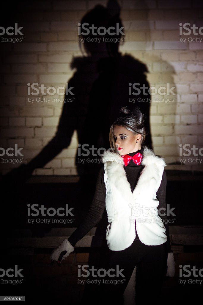 Beautiful, glamorous, fashionable woman cat with a shadow on wall. stock photo