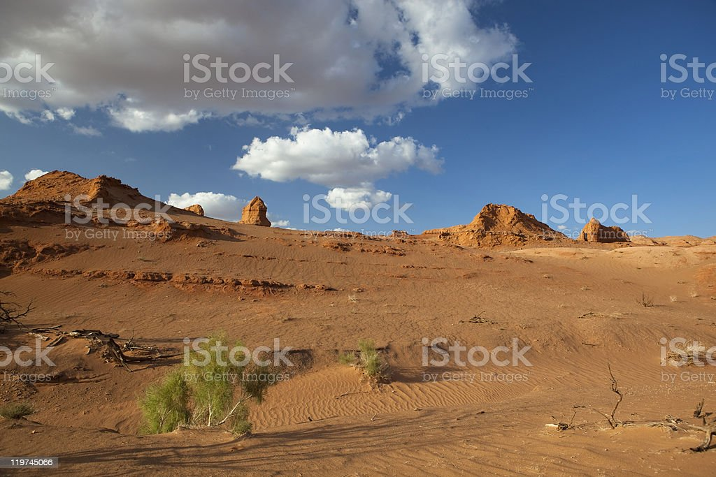 Beautiful Gobi royalty-free stock photo
