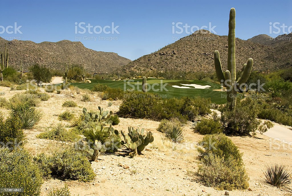 Beautiful Golf Courses 2 stock photo