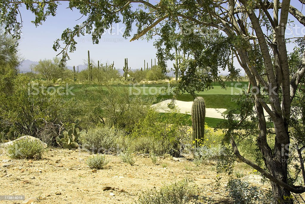 Beautiful Golf Courses 3 stock photo