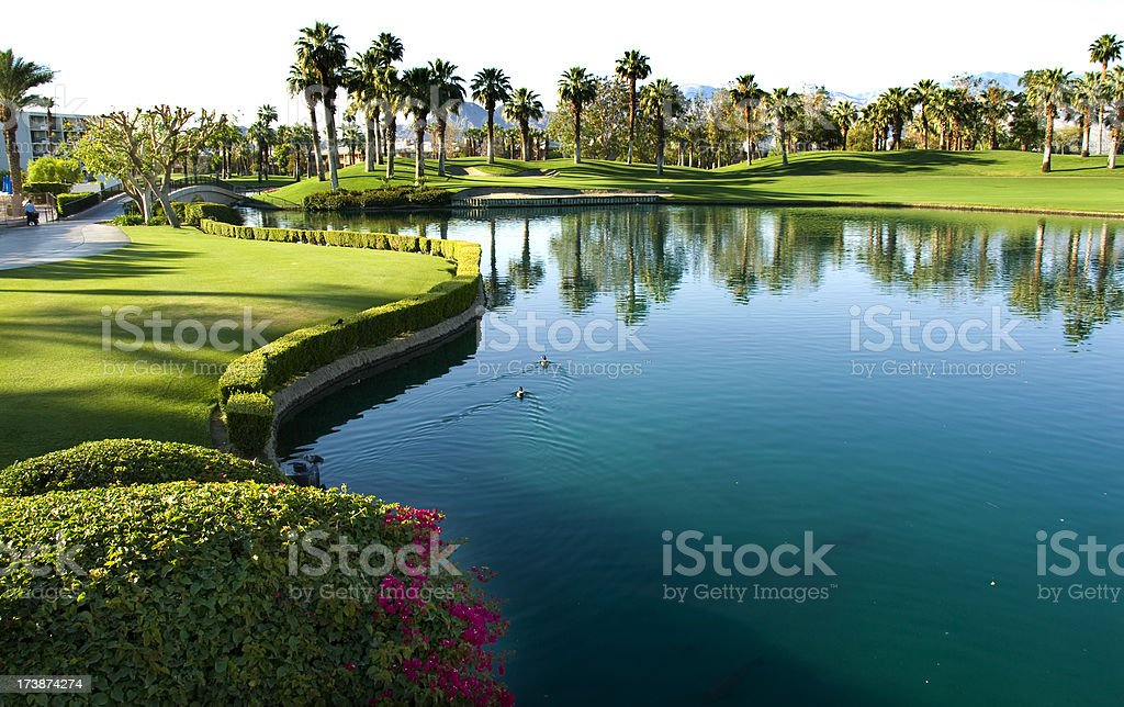 Beautiful Golf Courses - The Palms at Dawn 1 stock photo