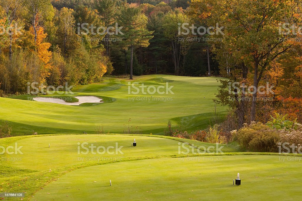beautiful golf green and sand pit stock photo