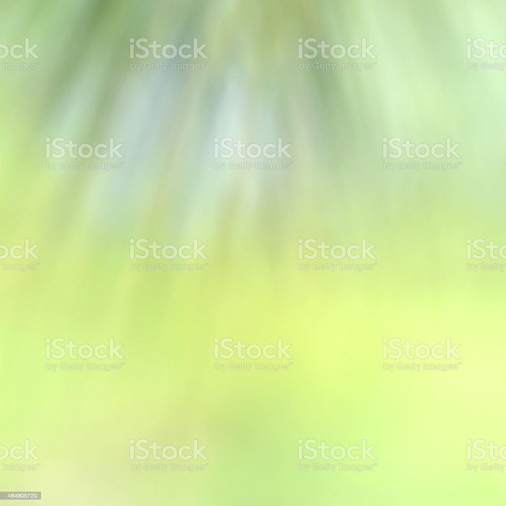 Magnifique fond vert photo libre de droits