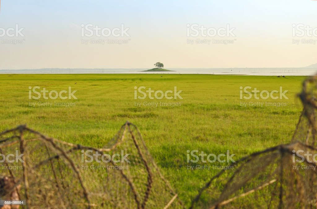 Beautiful green field and small island middle river. stock photo