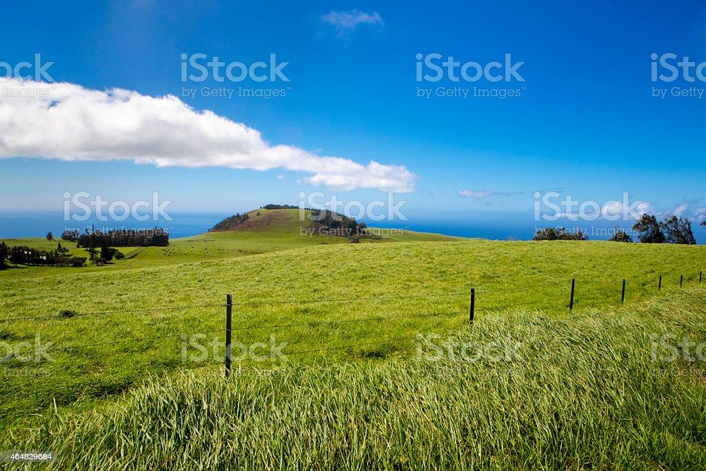 Beautiful Green Mountain Pasture stock photo