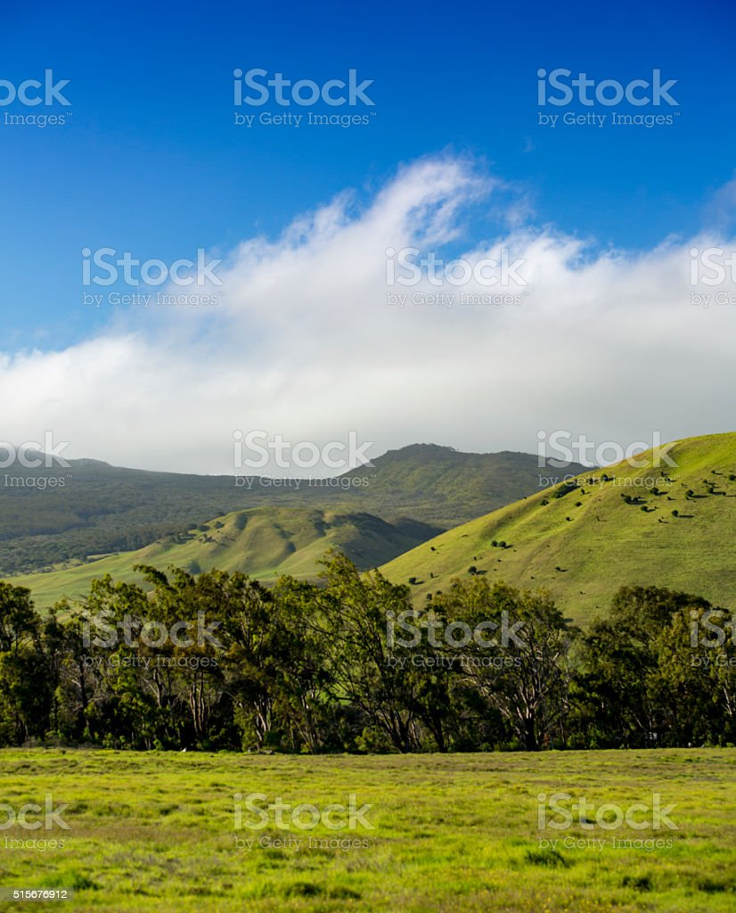 Beautiful Green Rolling Hills and Blue Sky stock photo