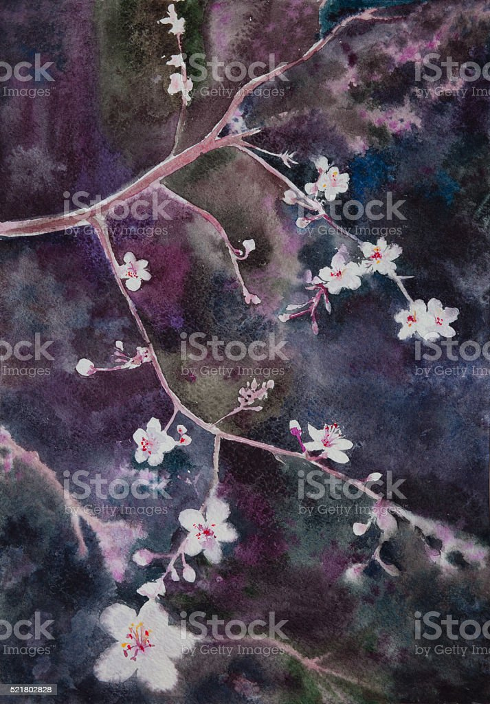 beautiful  handpainted watercolor blooming apricot tree brunch stock photo