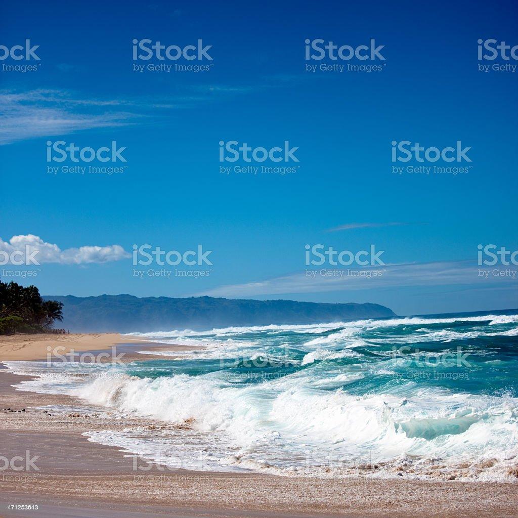 Beautiful Hawaiian Beach Oaho North Shore royalty-free stock photo
