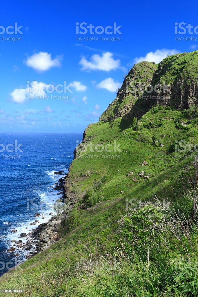 Beautiful Hawaiian landscape stock photo