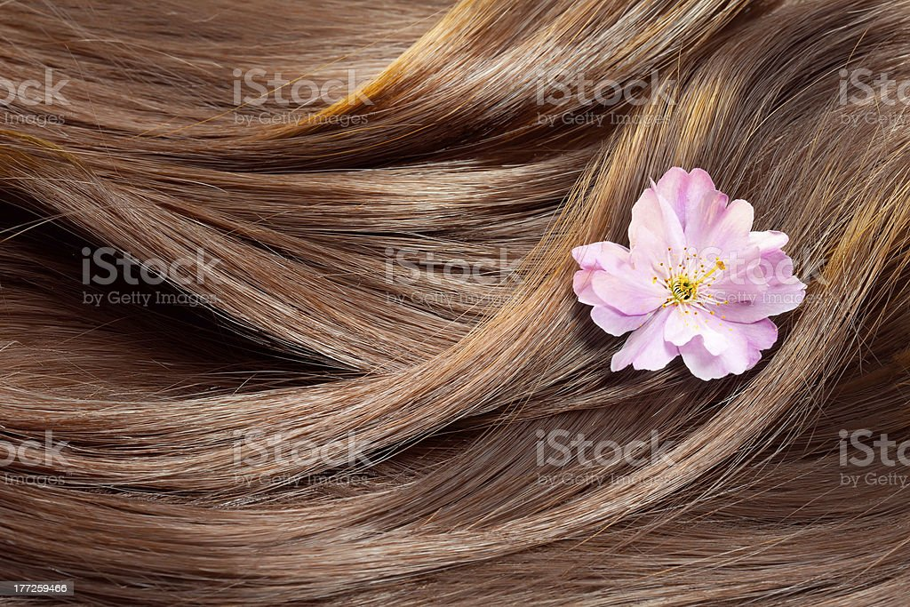 Beautiful healthy shiny hair texture with a flower stock photo