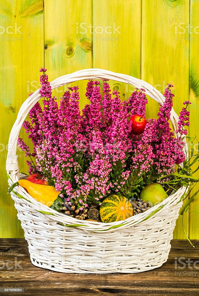 Beautiful heather in basket on wooden background. Flowers of autumn. stock photo